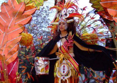 Desfile-carnavalmoral-2008-055