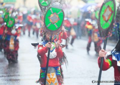 Desfile-carnavalmoral-2013-028