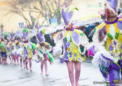 Desfile-carnavalmoral-2013-051