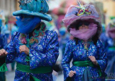 Desfile-carnavalmoral-2013-100