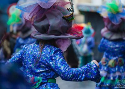Desfile-carnavalmoral-2013-102