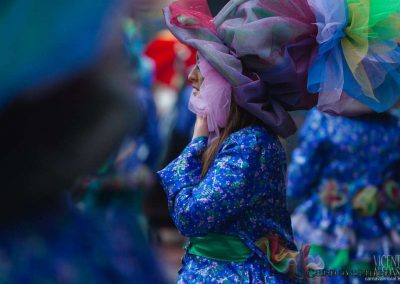 Desfile-carnavalmoral-2013-103