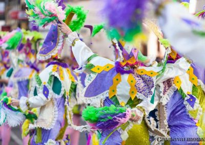 Desfile-carnavalmoral-2013-210