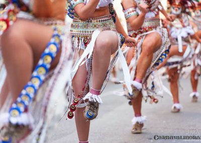 Desfile-carnavalmoral-2013-263