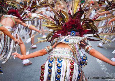 Desfile-carnavalmoral-2013-265