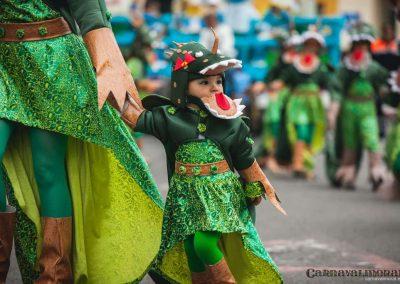 Desfile-carnavalmoral-2014-012