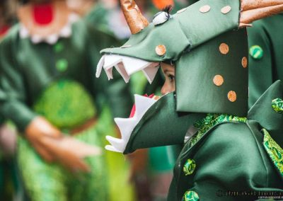Desfile-carnavalmoral-2014-017