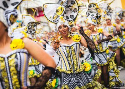 Desfile-carnavalmoral-2014-028