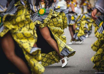 Desfile-carnavalmoral-2014-029