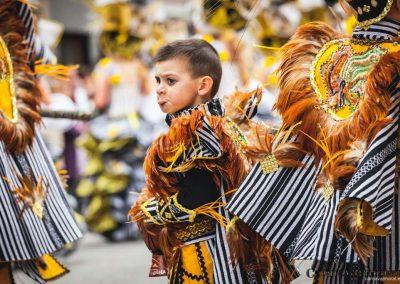 Desfile-carnavalmoral-2014-041