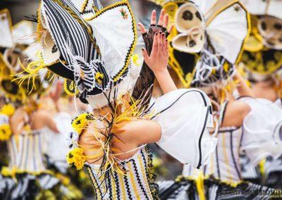 Desfile-carnavalmoral-2014-042