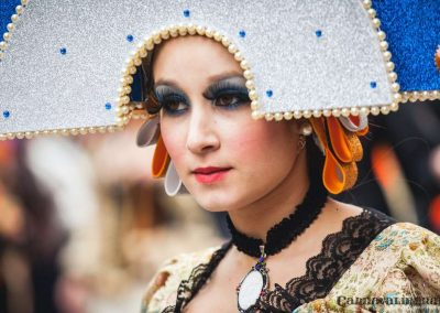 Desfile-carnavalmoral-2014-054