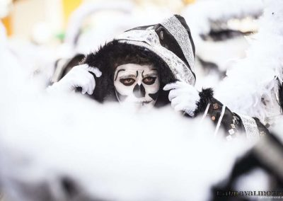 Desfile-carnavalmoral-2014-077