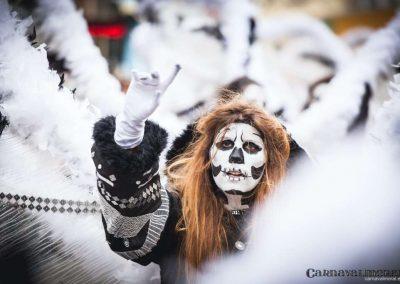 Desfile-carnavalmoral-2014-083
