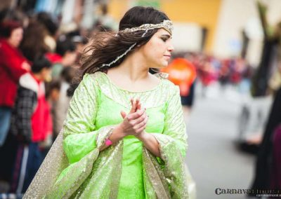 Desfile-carnavalmoral-2014-094