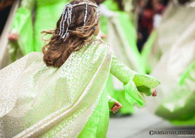 Desfile-carnavalmoral-2014-099