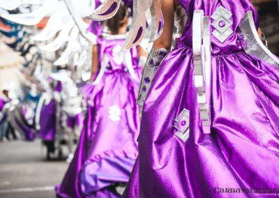 Desfile-carnavalmoral-2014-146