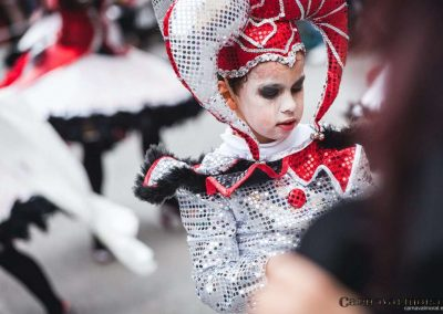 Desfile-carnavalmoral-2014-162