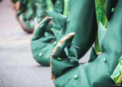 Desfile-carnavalmoral-2014-271