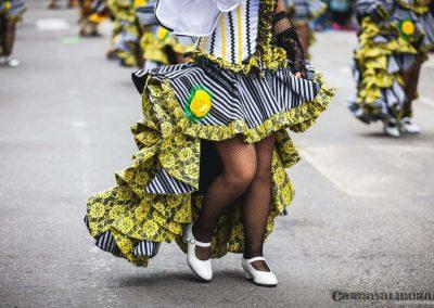Desfile-carnavalmoral-2014-278