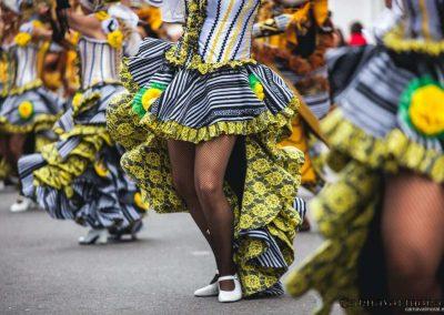 Desfile-carnavalmoral-2014-280