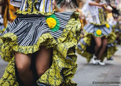 Desfile-carnavalmoral-2014-283