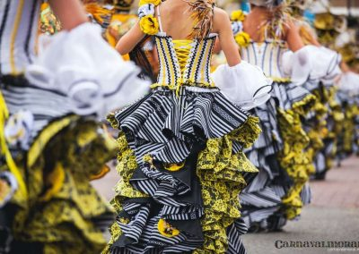Desfile-carnavalmoral-2014-287