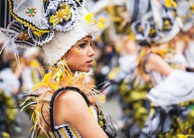 Desfile-carnavalmoral-2014-288