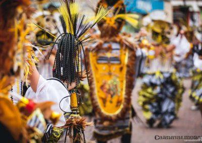 Desfile-carnavalmoral-2014-291