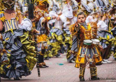 Desfile-carnavalmoral-2014-293