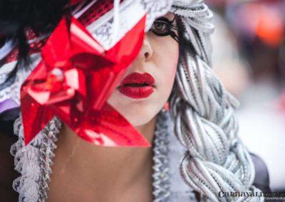 Desfile-carnavalmoral-2014-389