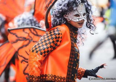 Desfile-carnavalmoral-2014-395