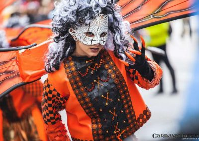 Desfile-carnavalmoral-2014-396