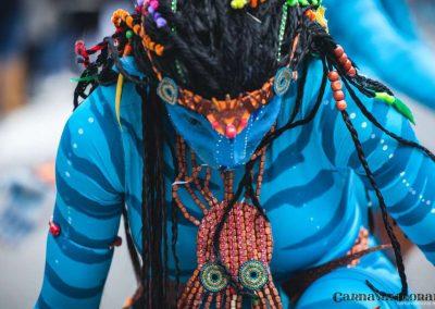 Desfile-carnavalmoral-2014-426