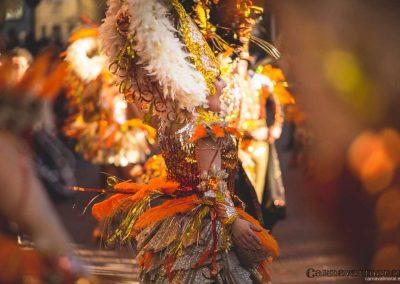 Desfile-carnavalmoral-2015-053