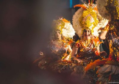 Desfile-carnavalmoral-2015-054