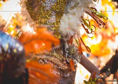 Desfile-carnavalmoral-2015-056