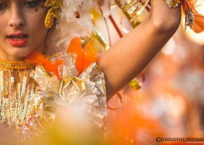 Desfile-carnavalmoral-2015-058