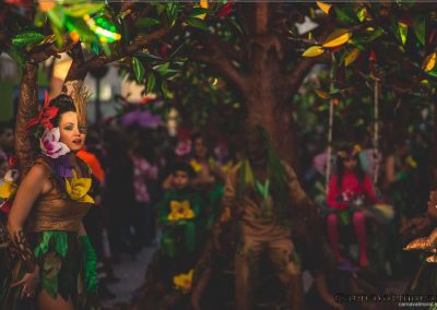 Desfile-carnavalmoral-2015-083
