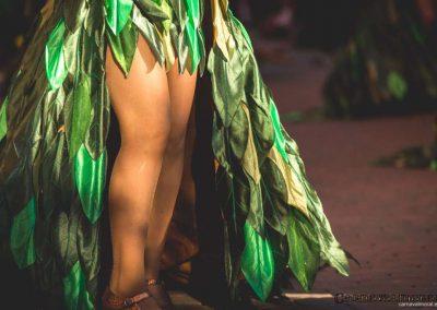 Desfile-carnavalmoral-2015-084