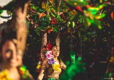 Desfile-carnavalmoral-2015-085
