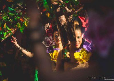Desfile-carnavalmoral-2015-086