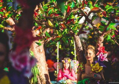 Desfile-carnavalmoral-2015-087