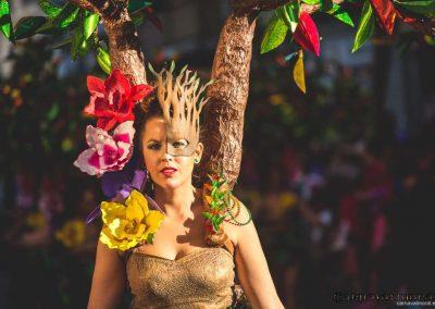 Desfile-carnavalmoral-2015-089