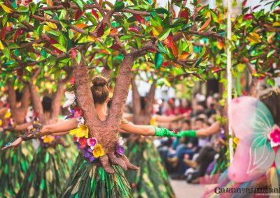 Desfile-carnavalmoral-2015-090