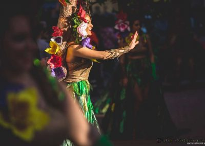 Desfile-carnavalmoral-2015-091