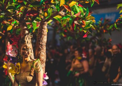 Desfile-carnavalmoral-2015-093