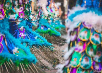 Desfile-carnavalmoral-2015-132