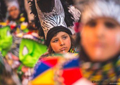 Desfile-carnavalmoral-2015-147