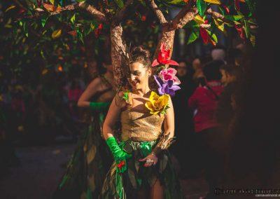 Desfile-carnavalmoral-2015-237